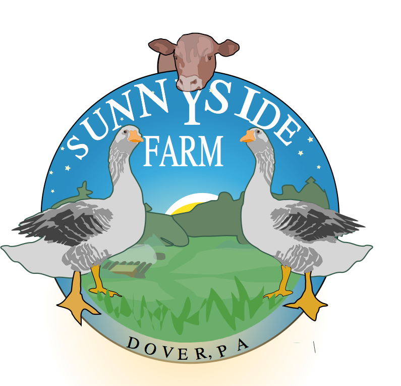 Farmer Innovations at Sunnyside Farm