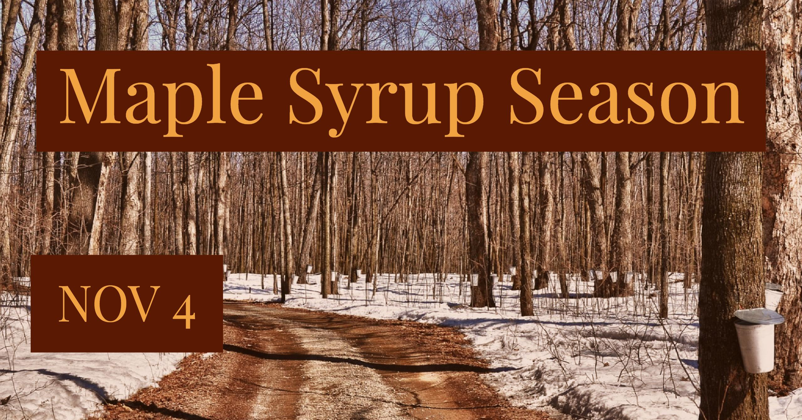 Preparing for the Maple Syrup Season